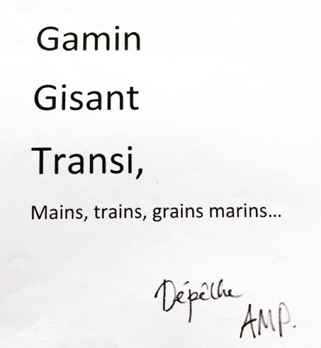 Anagrammes migrants d'Anne-Marie Pédezert